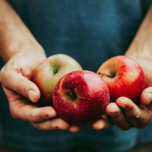 Goureinet Appels | Van Der Mey