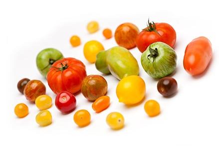 Inca Tomaten Mix