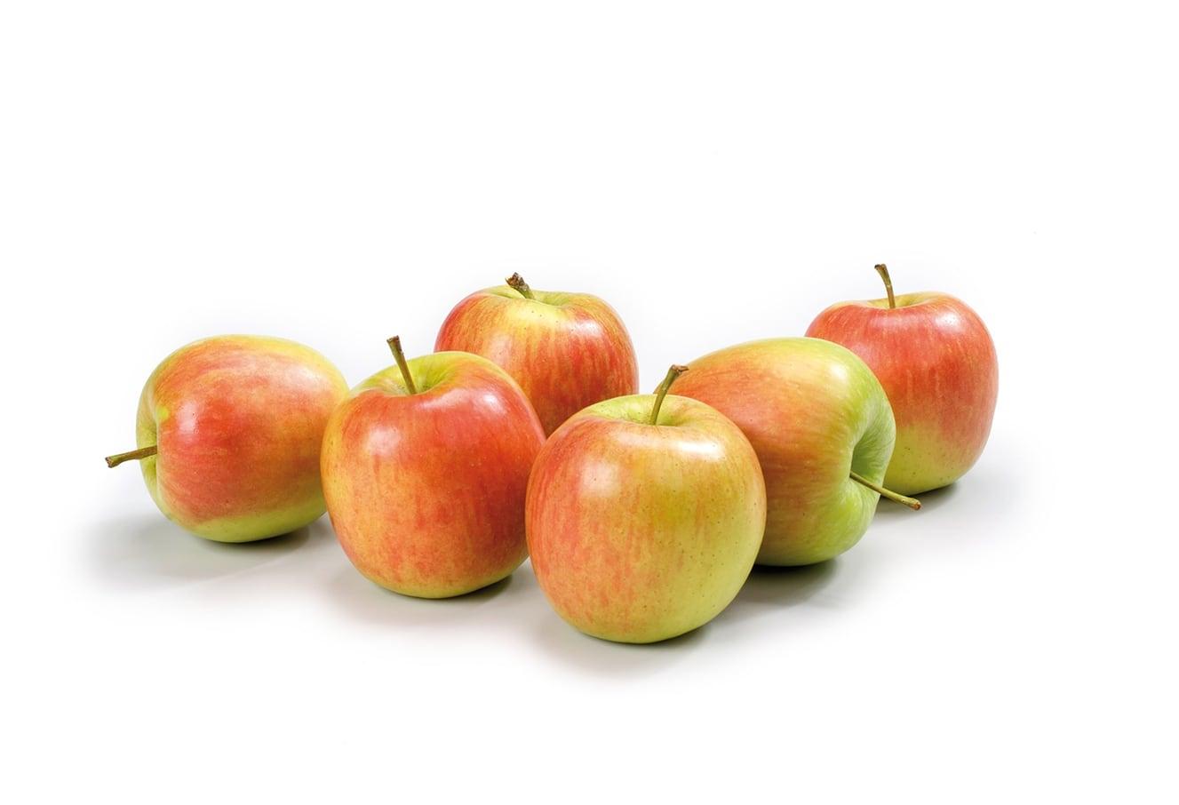 Actueel: Week 35 – Nieuwe Oogst Hollandse Appelen