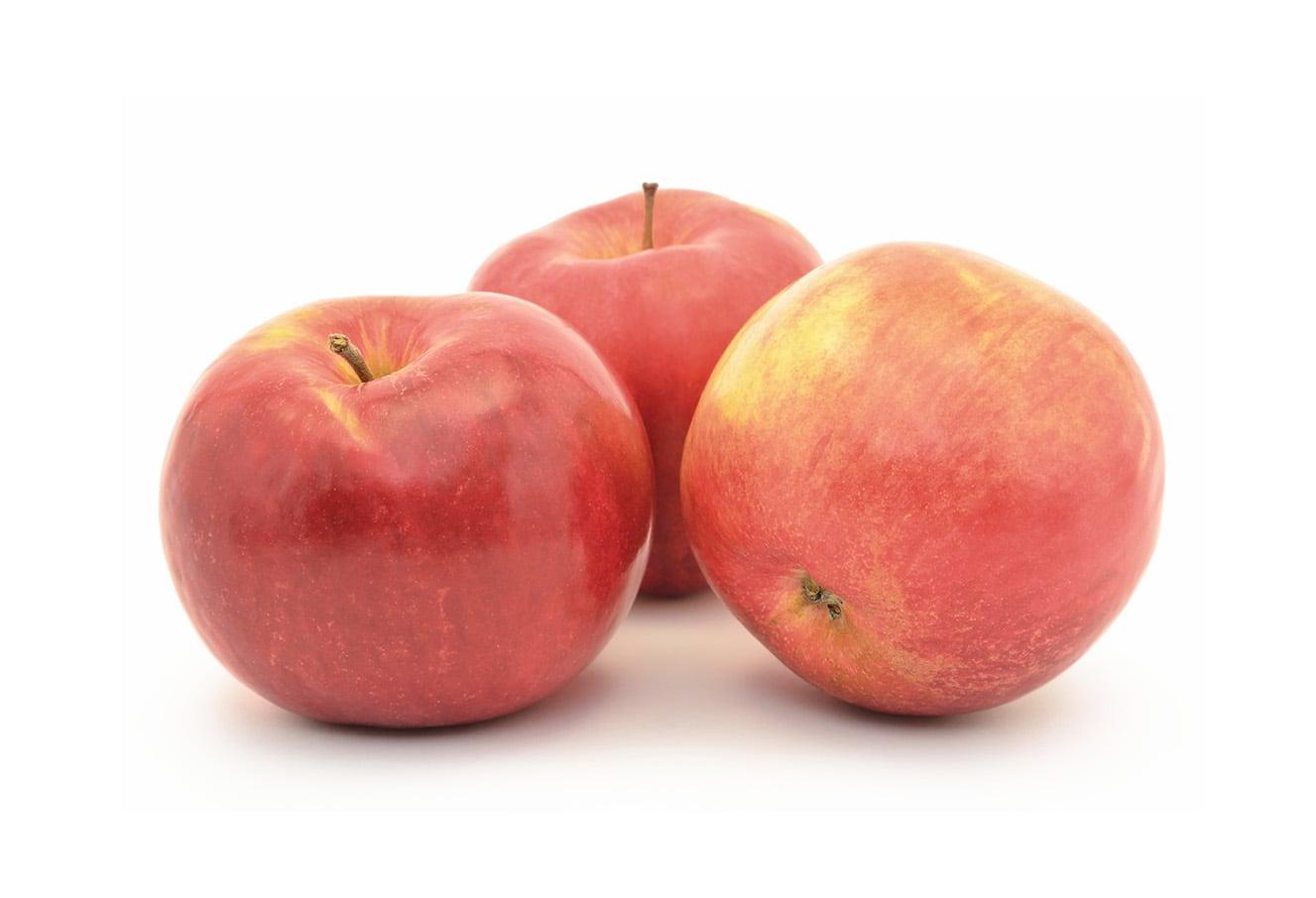 Actueel: Week 37 – Verse Hollandse Appels Beschikbaar